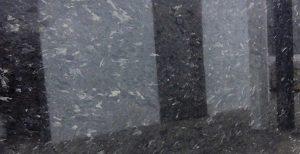 Alabaster Black 2