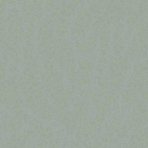 Silestone Grey Moss